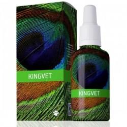 Energy Vet Kingvet 30 ml