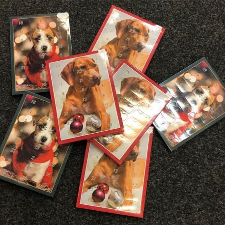 Adventní kalendář pro psy malý